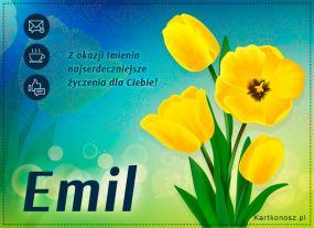 eKartki Imieniny Tulipany dla Emila,