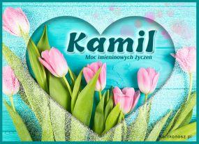 Tulipany dla Kamila