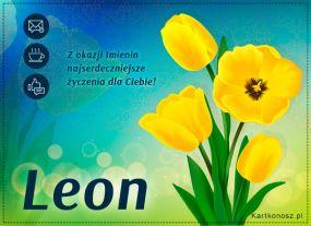 eKartki Imieniny Tulipany dla Leona,