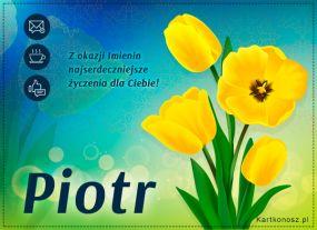 eKartki Imieniny Tulipany dla Piotra,