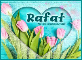 Tulipany dla Rafała