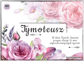 eKartki Imieniny Tymoteusz - Kartka Imieninowa,
