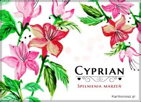 Życzenia dla Cypriana