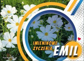 Życzenia dla Emila