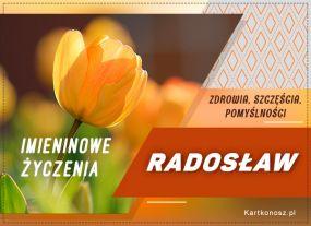 Życzenia dla Radosława