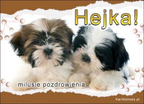 Hejka!