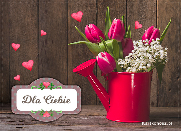 Tulipany dla Ciebie