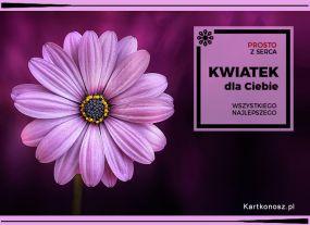 eKartki Kwiaty Kwiatek dla Ciebie,