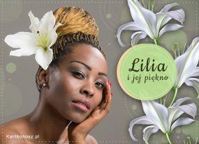 eKartki Kwiaty Lilia i jej piękno,