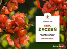 eKartki Kwiaty Moc życzeń!,