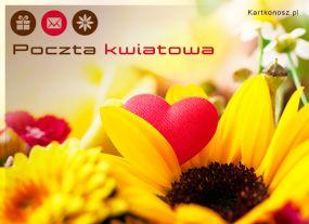 eKartki Kwiaty Poczta kwiatowa,