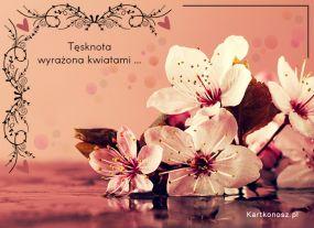 Tęsknota wyrażona kwiatami