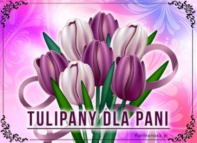 eKartki Kwiaty Tulipany dla Pani,