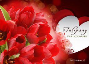 e Kartki Kwiaty Tulipany dla ukochanej,
