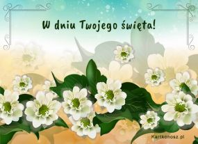 eKartki Kwiaty W dniu Twojego święta!,