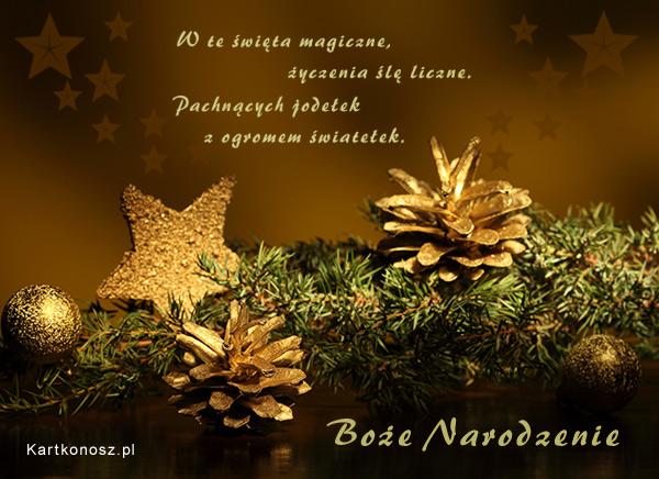 Święta magiczne