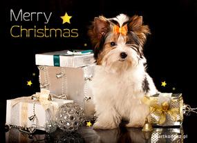 eKartki Boże Narodzenie Wyśnione prezenty,