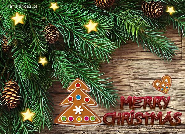 Pod świąteczną choinką