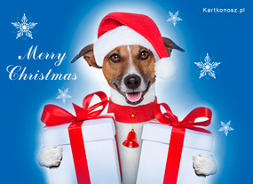 eKartki Boże Narodzenie Prezenty dla Ciebie,