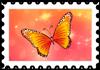 Kolorowy motyl